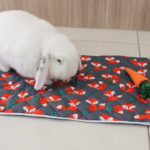 Quilted Pet Blanket